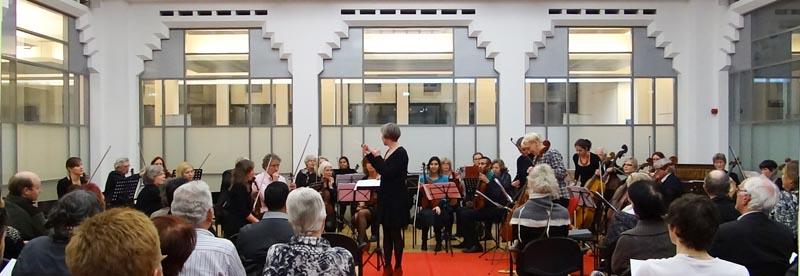 Strijkorkest uitvoering 10 februari 2014